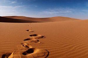 Saat Paceklik dan Kekeringan, Umar bin Khattab Bertawasul kepada Paman Nabi SAW