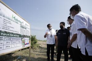 Erick Thohir Pastikan Petani Dapat Manfaat dari Program Makmur