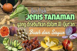 Buah dan Sayuran yang Disebut Dalam Al-Quran, Sebagian Tumbuh di Indonesia