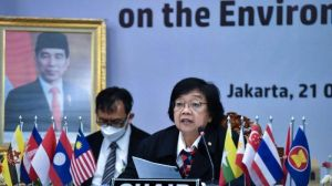 Indonesia dan Brasil Siap Kolaborasi Pengelolaan Pajak Karbon