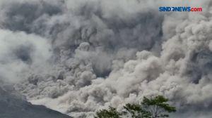 Video Gunung Semeru Erupsi
