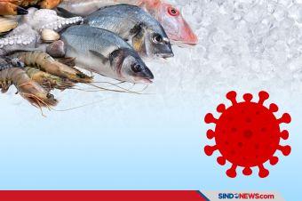 Terkena Corona Produk Seafood Asal Indonesia Dilarang Masuk China