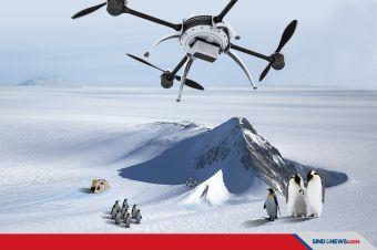 Keberadaan Burung Berjalan di Antartika Dilacak Drone Autonomus