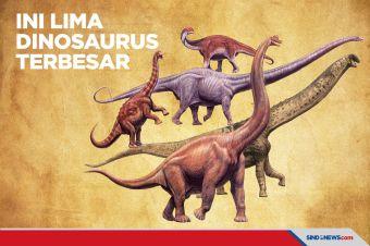 Ini 5 Dinosaurus Terbesar yang Pernah Hidup di Bumi