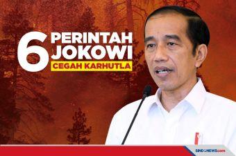 Cegah Kebakaran Hutan dan Lahan, Ini Enam Perintah Jokowi