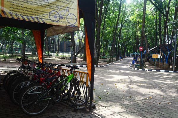 Mau Sepedaan? Ini Rekomendasi Hutan Kota yang Asyik Buat Gowes