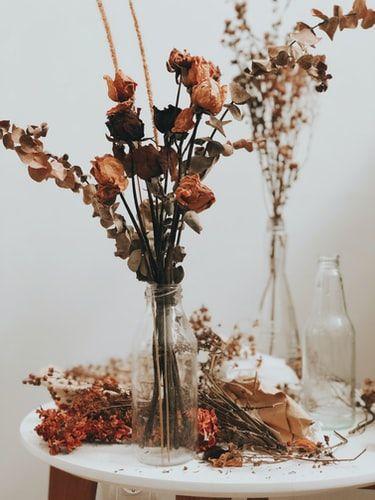 Dapat Buket Bunga Jangan Langsung Dibuang Ini Cara Memanfaatkannya