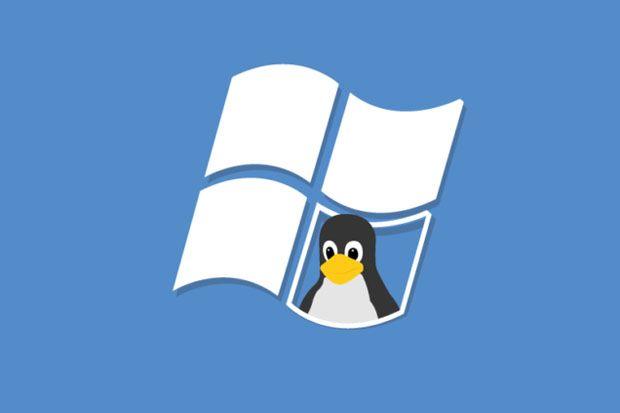 Butuh 3-10 Tahun Bagi Linux untuk Geser Posisi Windows di China