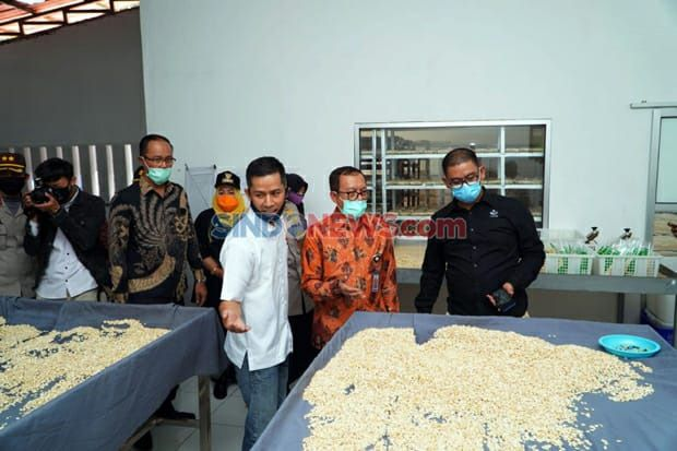 Indonesia Halal Watch Resmikan Rumah Tempe di Bogor