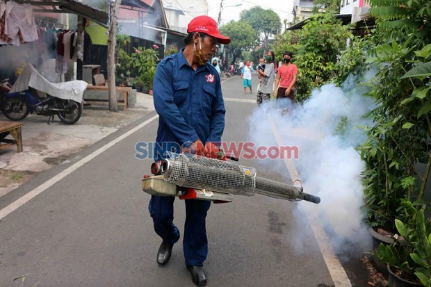 Kasus Chikungunya di Kediri Meningkat saat Pandemi COVID-19