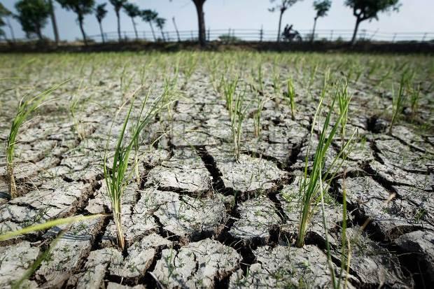 Ini Penyebab Suhu Dingin dan Prediksi Puncak Kemarau di Indonesia