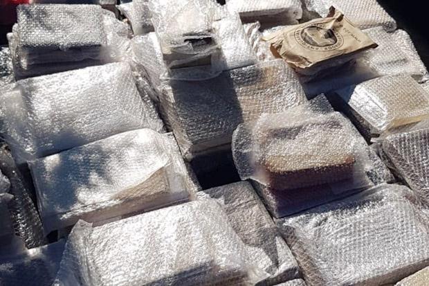 Ratusan Buku Bersejarah Senilai Rp47 Miliar Ditemukan Terkubur di Rumania