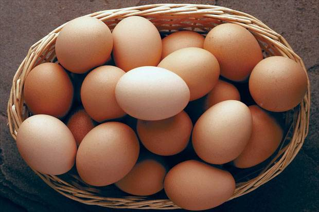 Pemerintah Gunakan Telur HE untuk BPNT, Peternak Blitar Kelimpungan