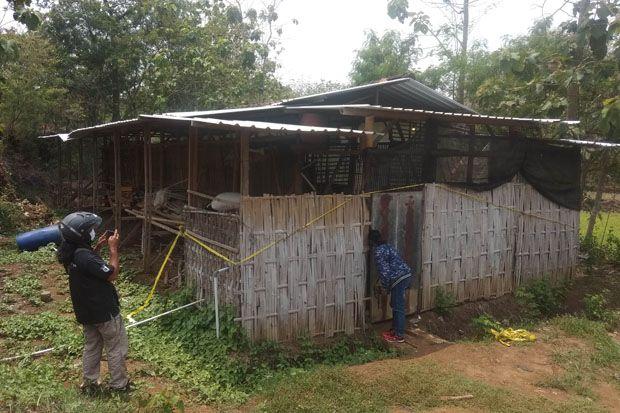 Perempuan Dibakar di Dalam Mobil, Pelaku dan Korban Bisnis Ternak Ayam