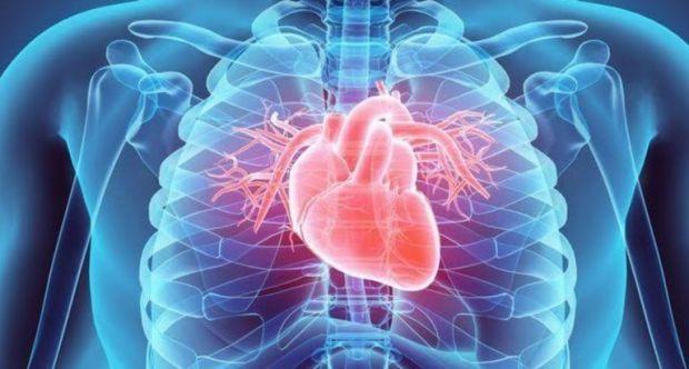 Ilmuwan Australia Kembangkan Mesin Prediksi Terjadinya Kardiovaskular