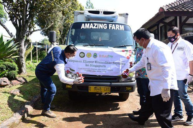 Ekspor Produk Holtikultura Jabar 2020 Tembus Rp3 Triliun