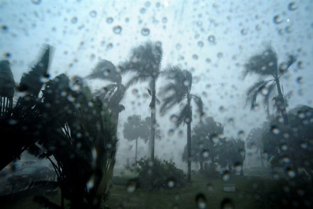 Peringatan Dini BMKG: Waspadai Hujan Disertai Angin Kencang pada Siang dan Sore Hari