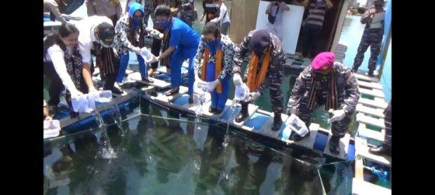 Danlantamal VII Kupang Tebar Benih Ikan di Perairan Desa Wisata Kojadoi
