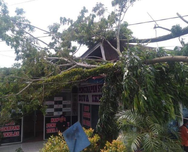 Belasan Rumah di Padang Pariaman Tergenang Banjir dan Satu Tertimpa Pohon