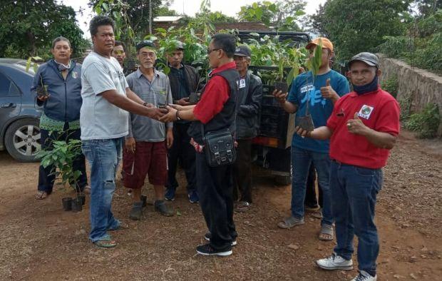 1.200 Benih Kopi Disebar ke Kelompok Tani untuk Penghijauan Lahan