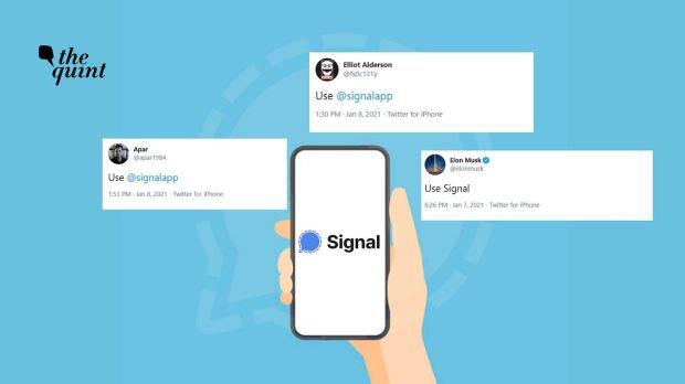 Disarankan Elon Musk, Signal Ancam Eksistensi WhatsApp dan Telegram