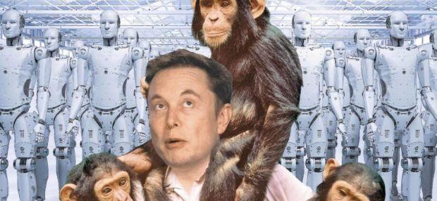 Elon Musk Ingin Monyet seperti Manusia Jago Main Game