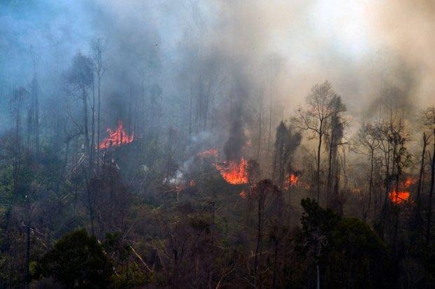 Awas, 65 Titik Panas Terdeteksi di Riau, Warga Mulai Cemas Munculnya Kabut Asap