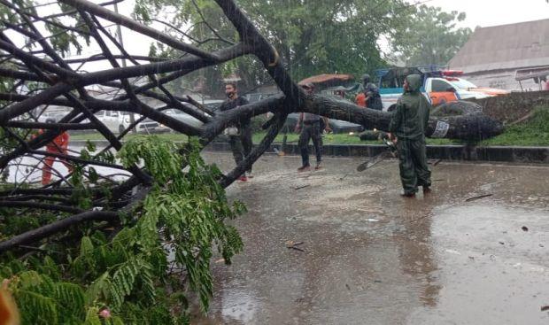 Puting Beliung dan Pohon Tumbang Rusak Rumah Warga Padang
