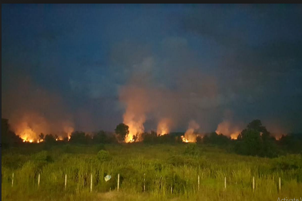 Dua Hektar Lahan di Tepian Tol Palindra Terbakar