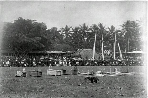 Rampogan Macan-Sima Maesa, Cara Orang Jawa Membunuh Kolonial Belanda