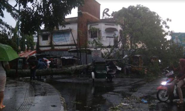 Dihajar Anging Kencang, Pohon Tumbang Timpa Sejumlah Kios di Pematangsiantar