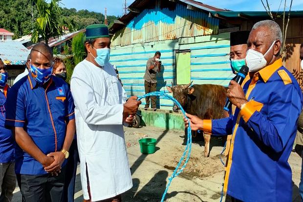 Rayakan Idul Adha, NasDem Papua Barat Serahkan 80 Sapi Kurban