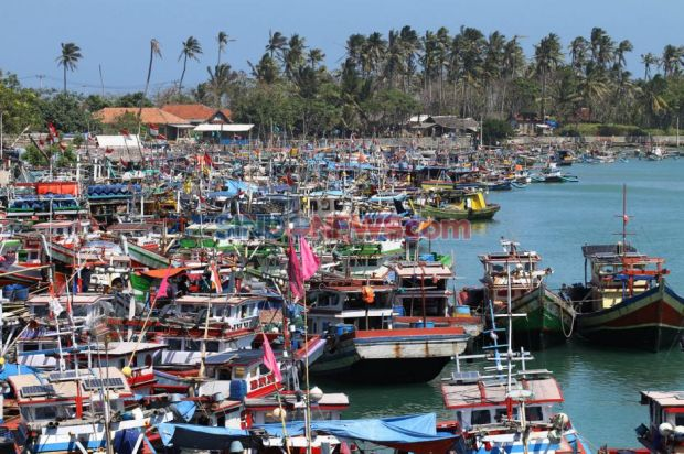 Aplikasi Laut Nusantara Bikin Nelayan Bisa Tangkap Ikan-Ikan Mahal