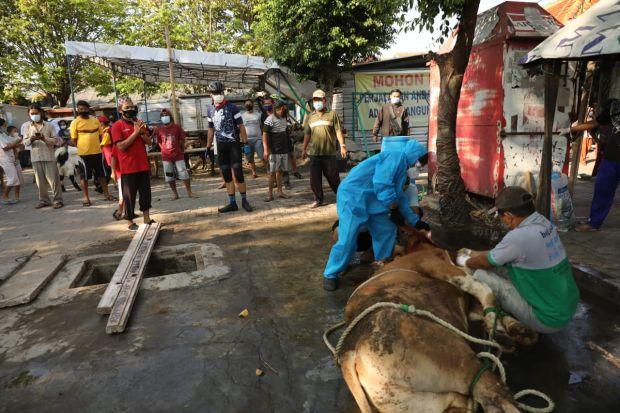 Naik Sepeda, Gubernur Ganjar Keliling Kampung Waspada Klaster Kurban