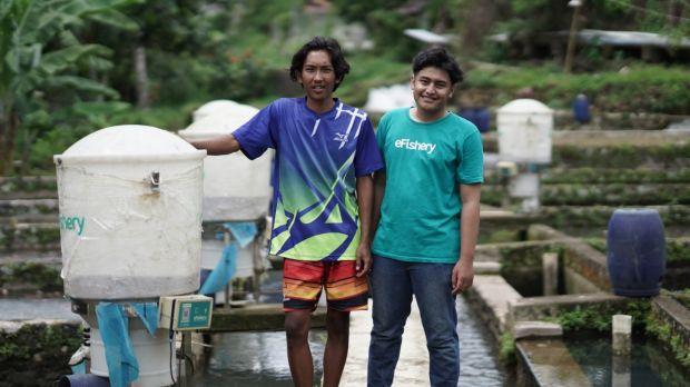 eFishery Permudah Akses Pembiayaan ke Pembudidaya Ikan