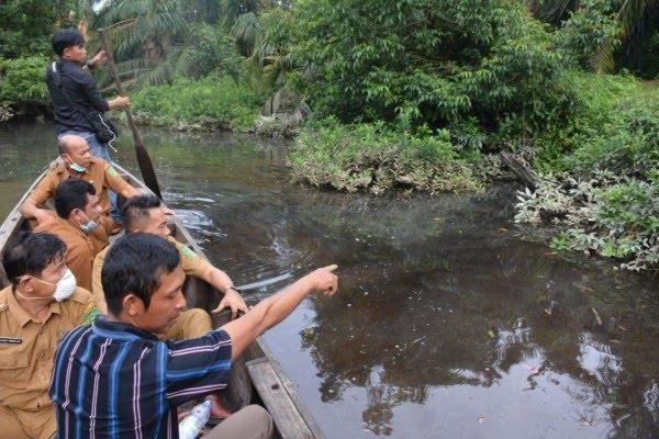 Ribuan Ikan di Sungai Sei Sirah Langkat Mati Mendadak