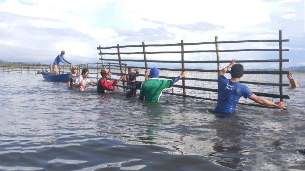Rehabilitasi Mangrove Bantu Tingkatkan Penghasilan Nelayan