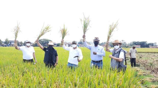 KPED Jabar Perkuat Ketahanan Pangan Melalui Teknologi Pertanian