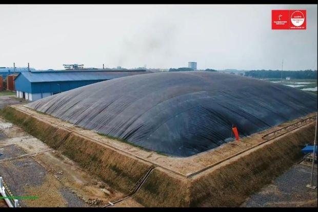 Kembangkan Bioenergi, PTPN Manfaatkan Cangkang Sawit dan Ampas Tebu untuk Pembangkit Listrik