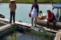 Kembangkan Budidaya Ikan Kerapu, Mantan Honorer Pemkab Bangka Selatan Raih Omset Miliaran Rupiah
