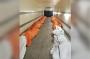 Tragis, Truk Trailer di New York Penuh Mayat Korban Corona