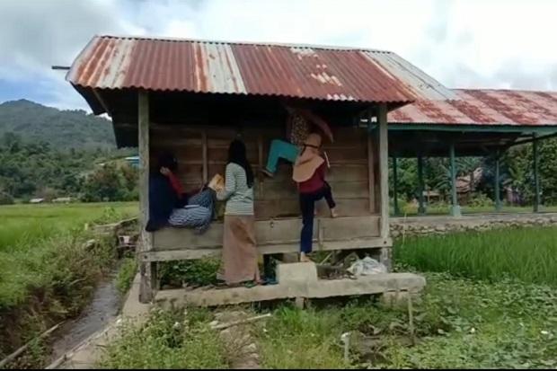 Terkendala Internet, Pelajar di Palopo Belajar Daring di Tengah Sawah