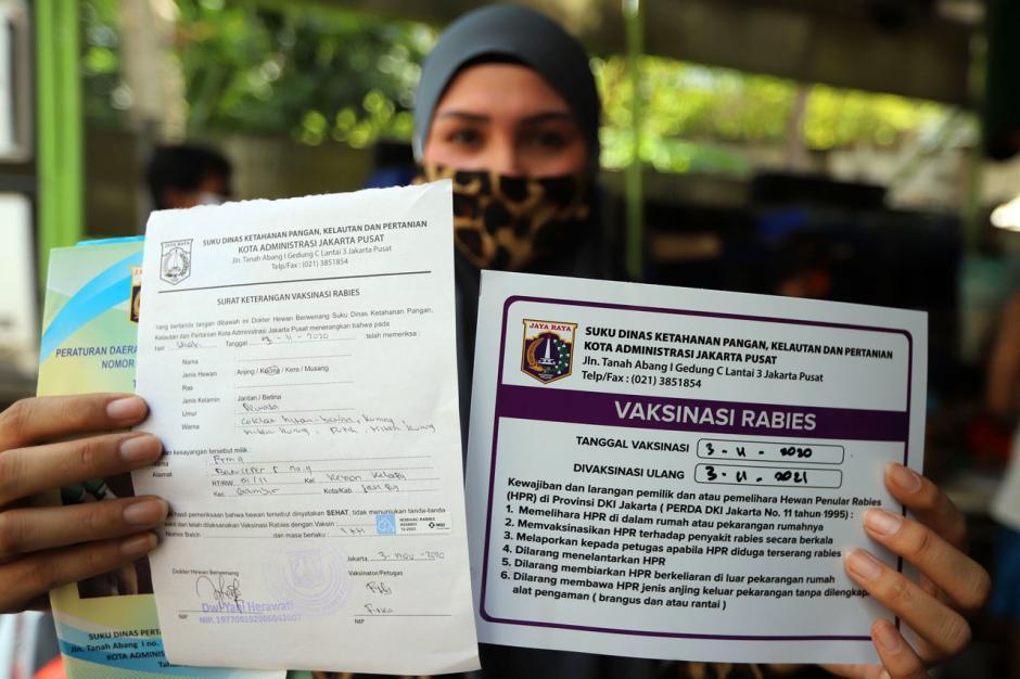 Program Vaksin Rabies Gratis di Jakarta Ramai Peminat-3