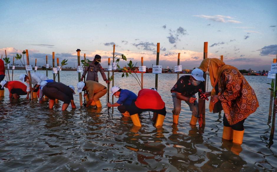 Penanaman Mangrove di Makassar New Port-0